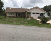 6520 Pine Meadows Drive, Spring Hill image
