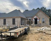1247 Old Court Crossing, Flowood image