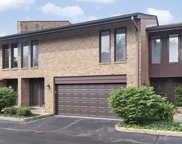 1732 Wildberry Drive Unit F, Glenview image