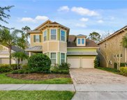 8736 Peachtree Park Court, Windermere image