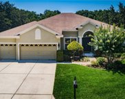1805 Mountain Ash Way, New Port Richey image