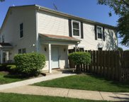 1182 E Barberry Lane Unit #B, Palatine image