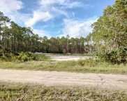 5388 Nutwood Avenue, Bunnell image