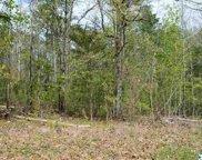 Lot 34 County Road 608, Cedar Bluff image