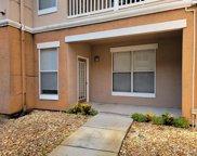 17976 Villa Creek Drive Unit 17976, Tampa image