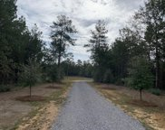 13.5 Acres Big Acres Estate, Sumrall image