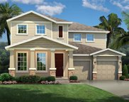 16576 Surprise Lily Drive, Winter Garden image