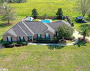 20898 County Road 49, Silverhill image