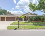 4730 Brayton Terrace N, Palm Harbor image