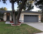 2513 Southern Oak Circle, Clearwater image