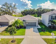 10602 Strawberry Tetra Drive, Riverview image