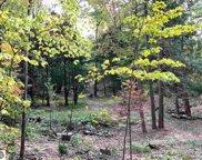 N Manitou Trail, Leland image