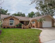 42 Freshwater Drive, Palm Harbor image