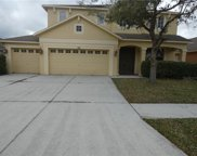 3651 Duke Firth Street, Land O' Lakes image