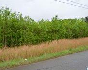 Maddox Road, Danville image