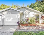 12304 Forest Lane Drive, Tampa image