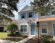 8602 Hunters Key Circle, Tampa image