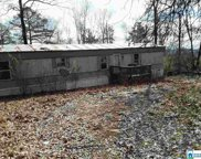 98 Lynch Lake Rd, Odenville image
