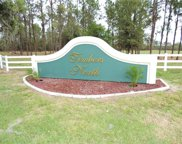 Timbers Drive, Fort Meade image