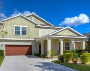 14230 Blue Dasher Drive, Riverview image