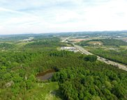 Parcel 066.00 Winfield Dunn Parkway, Sevierville image