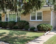 6701 W Forest View Lane, Niles image