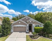 19610 Sunset Bay Drive, Land O' Lakes image