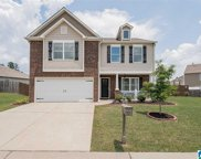 512 Chesser Reserve Way, Chelsea image