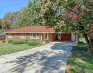 1202 Cardinal Road, Conyers image