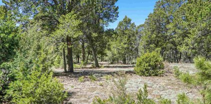 47 Silver Feather Trail, Pecos