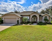 112 Black Hickory Way, Ormond Beach image
