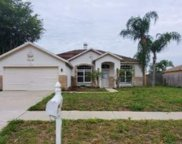 22327 Willow Lakes Drive, Lutz image
