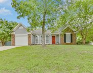 14722  Cane Field Drive, Charlotte image