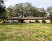 8213 Sunny Vale Place, Tampa image