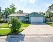 2481 Orangepointe Avenue, Palm Harbor image
