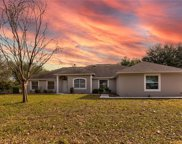 9518 Tower Pine Drive, Winter Garden image