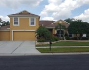 1502 Crooked Stick Drive, Valrico image