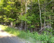 249 Forest Depths Road, Beaver Cove image
