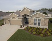 1674 Cherry Blossom Ter, Lake Mary image