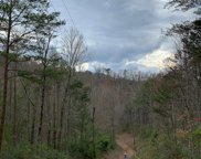Off Caney Creek Rd, Pigeon Forge image
