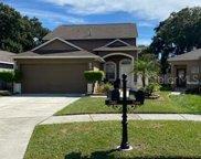 7207 Bellingham Oaks Boulevard, Tampa image