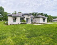 25846 Crossings Bluff Lane, Sorrento image