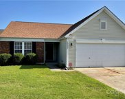 10041 Orchard Grass  Court, Charlotte image