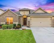 23215 Red Birch Court, Tomball image