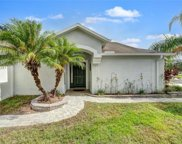 4616 Mcbrine Court, Land O' Lakes image
