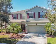 8812 Riverscape Way, Tampa image