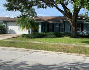 10409 Out Island Drive, Tampa image