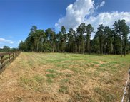 Lot 4 Winters Ranch Road, New Waverly image