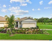 17422 Blazing Star Circle, Clermont image