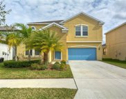 12304 Ballentrae Forest Drive, Riverview image